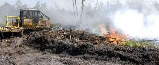 Georgia Forestry Commission Habersham County